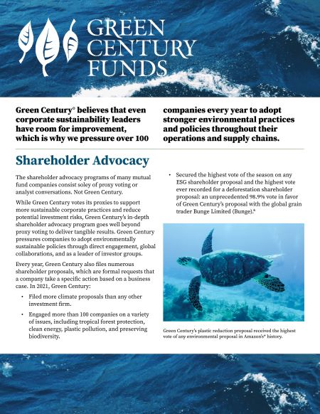 Shareholder Advocacy 2-pager thumbnail
